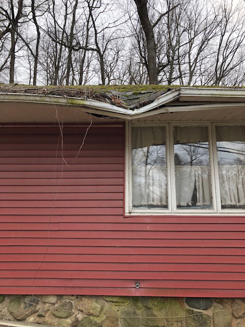 Tree-damaged roof replaced, Ringwood, NJ 07456